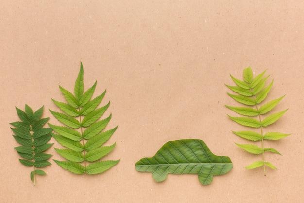 상위 뷰 자동차 잎 모양
