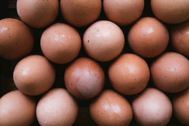 Top view carton of eggs