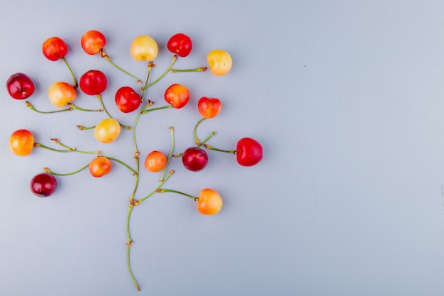 Top view of cherries and stems on left side and blue with copy space tree concept