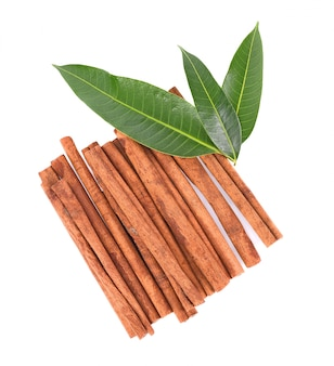 Top view of cinnamon stick spice isolated