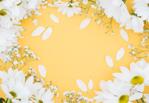 Top view circular floral frame with yellow background
