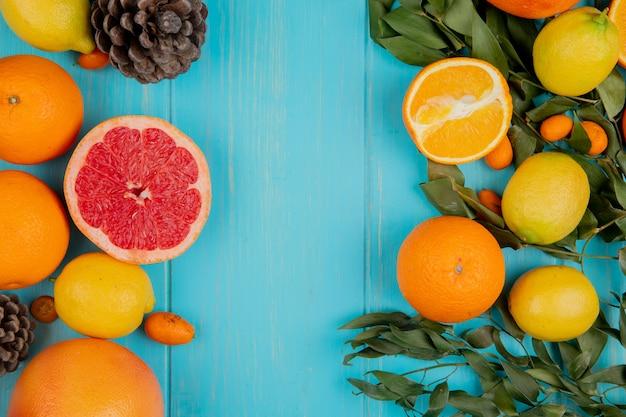 Vista dall'alto di agrumi come pompelmo limone arancia mandarino e kumquat su sfondo blu decorato con foglie e pigne