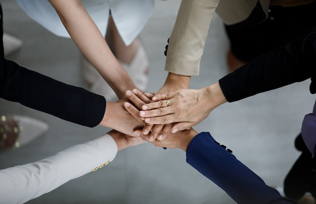Top view close up shot of professional successful group of businessman businesswoman colleagues partnership team hands holding together for company strong trust teamwork unity achievement commitment.