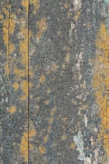 Vista dall'alto della superficie ruvida con vernice