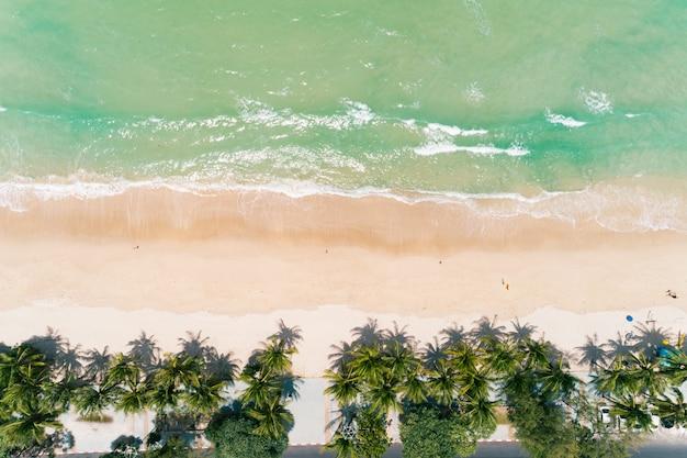 태국 푸켓 파통 해변의 최고 전망 코코넛 야자수.