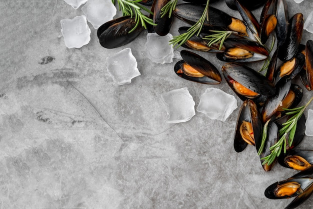 Top view of cold mussels