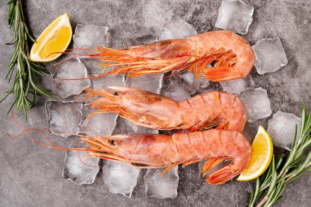 Top view of cold shrimps