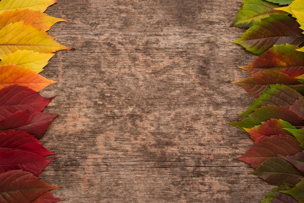 Top view of colored autumn leaves on wooden surface with copy space