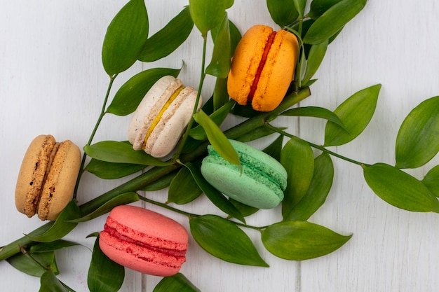 Top view of colored macarons with a branch of leaves on a white surface