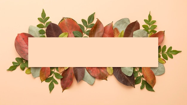 Top view of colorful autumn leaves with copy space