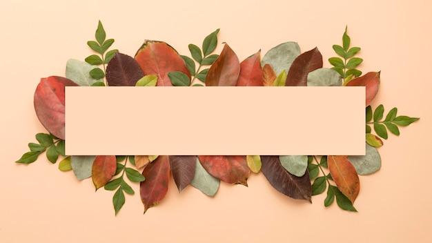 Vista dall'alto di foglie autunnali colorate con spazio di copia