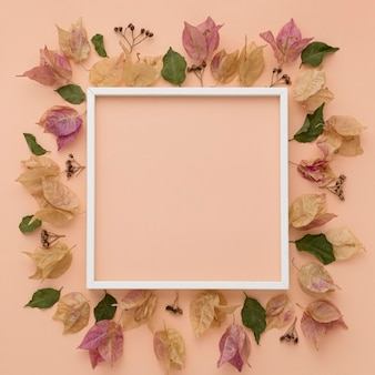 Top view of colorful autumn leaves with frame