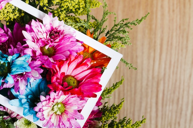 Top view colorful daisies with frame
