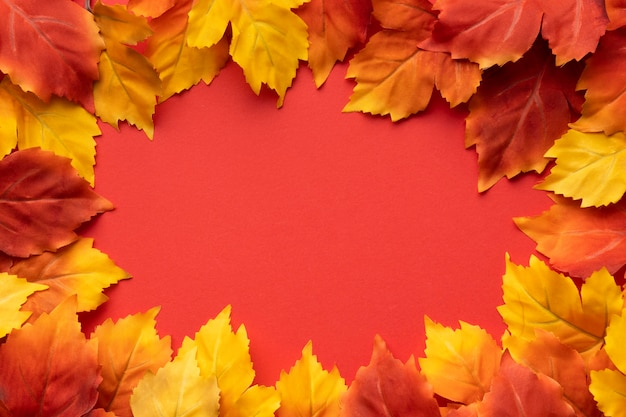 Top view colorful leaves frame