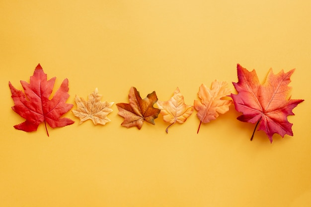 Top view colorful leaves on yellow background Premium Photo