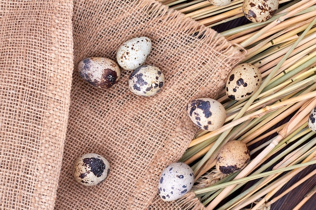 Top view composition of quail eggs. old rustic burlap cloth and dried grass.