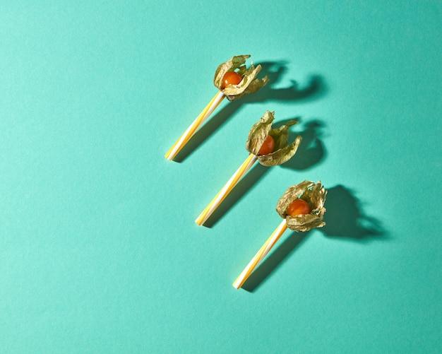 Композиция вида сверху с желтым растением физалис и пластиковыми соломинками для сока на фоне зеленой бумаги с мягкими тенями. современный стиль.