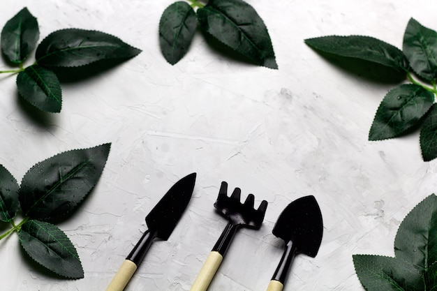 Top view concrete background with rose leaves and garden tools frame, spring gardening concept