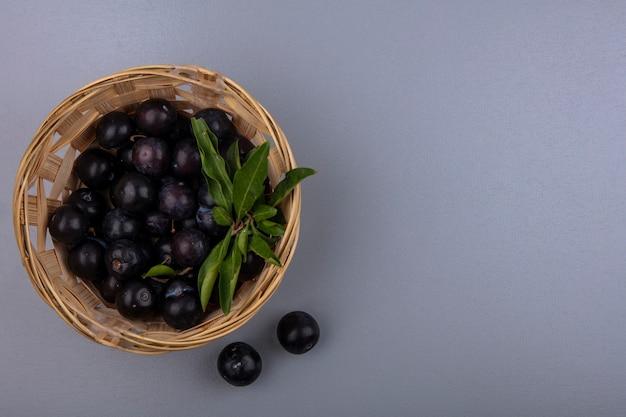 Vista dall'alto copia spazio ciliegia prugna in un cesto su uno sfondo grigio