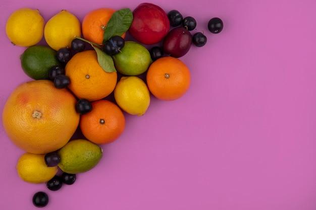 上面図コピースペースフルーツミックスグレープフルーツオレンジレモンライムプラムチェリープラムと桃ピンクの背景に