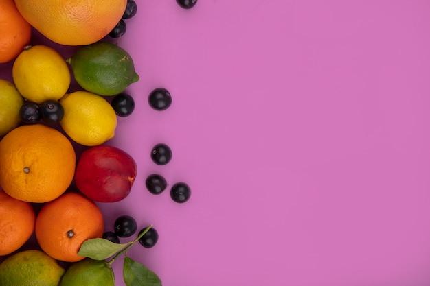 Top view  copy space fruit mix grapefruit  oranges  lemons  limes  plum  cherry plum and peach on pink background