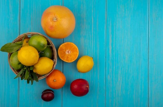 청록색 배경에 바구니에 라임과 오렌지 레몬 상위 뷰 복사 공간 자몽