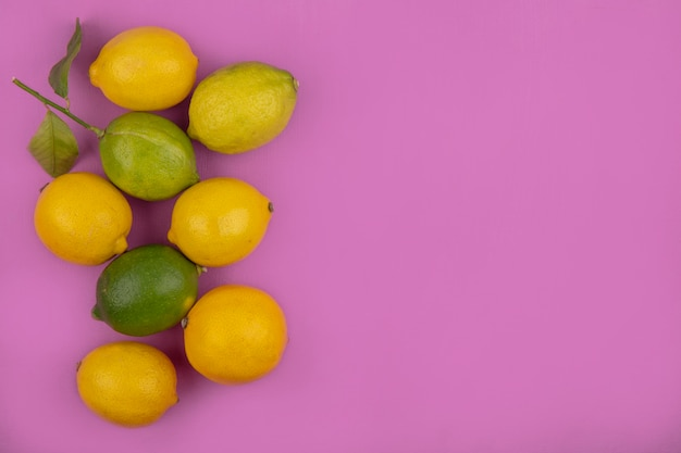 Limoni di spazio copia vista dall'alto con limette su sfondo rosa