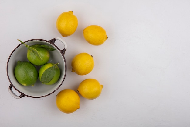 Top view  copy space limes in bowl with lemons on white background