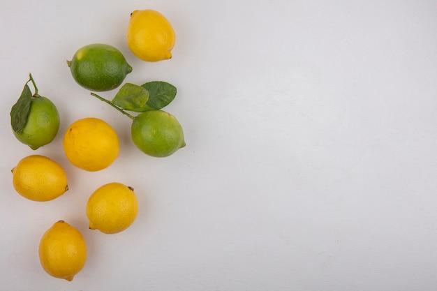 上面図のコピースペースは白い背景にレモンとライム