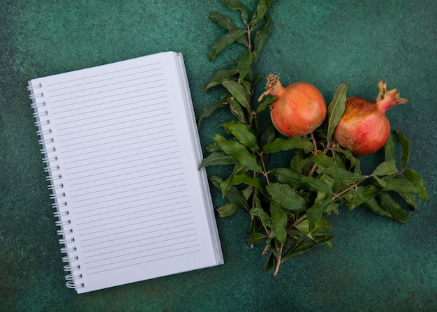 Top view  copy space notebook with pomegranates and branches on a green background