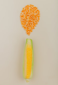 Top view of corn cob and corn seeds on white