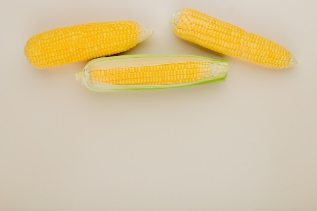 Top view of corn cobs on white with copy space