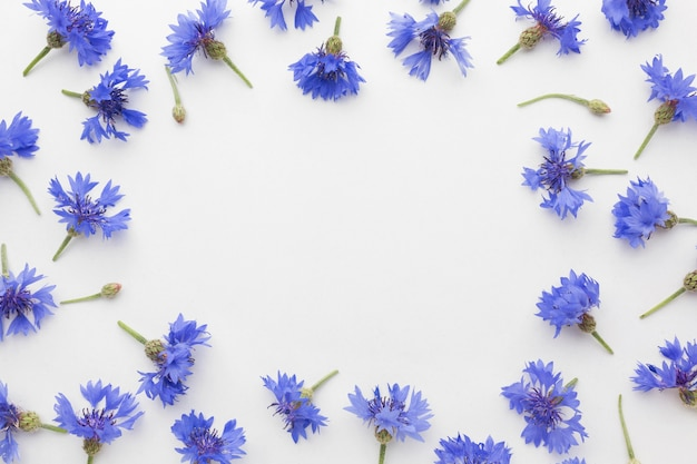 Top view cornflowers frame
