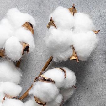 トップビュー綿のクローズアップ