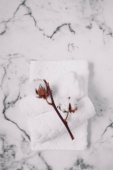 Top view of cotton twig and white napkins on marble backdrop