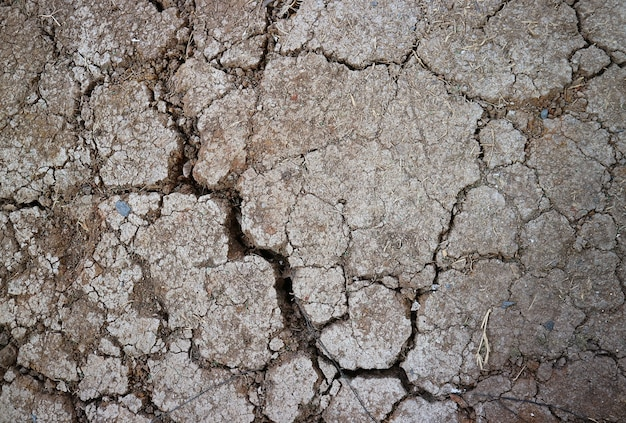 Top view of cracked dry soil surface texture for the concept of save the earth