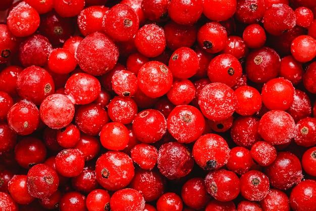 Top view cranberries arrangement