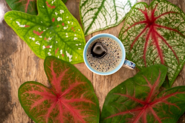Top view cup coffee against multicolor caladium leaves on textured wooden table