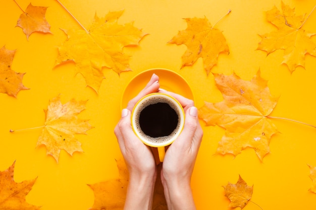 Top view cup of coffee with autumn leaves