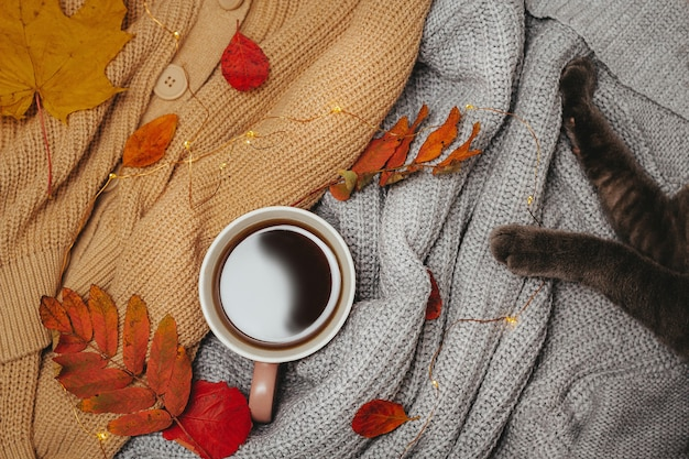 Top view cup of coffee with cozy sweaters