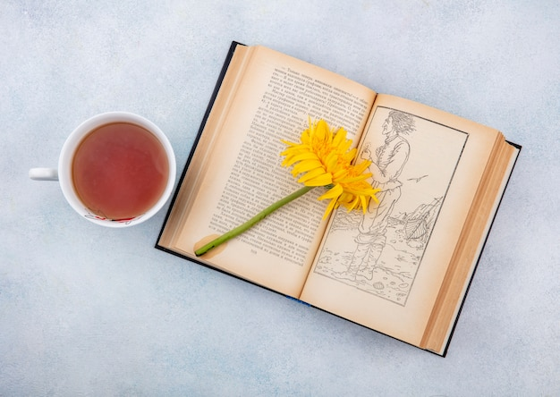 Top view of cup of tea and flower on open book on white