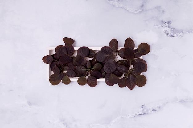 Вид сверху милый горшок композиция из листьев