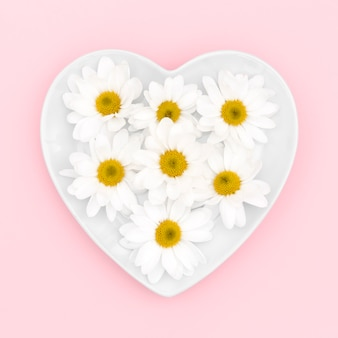 Top view of daisies on heart plate