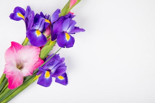 Vista superiore dell'iride di colore viola scuro e rosa e fiori di gladiolo isolati su fondo bianco con lo spazio della copia