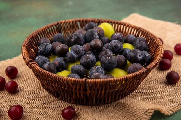 Vista dall'alto di prugnole viola scuro su un secchio con prugna ciliegia verde su un secchio su un panno di sacco su uno sfondo verde