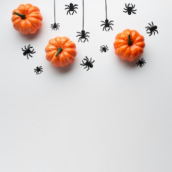 Top view decoration pumpkins and spiders