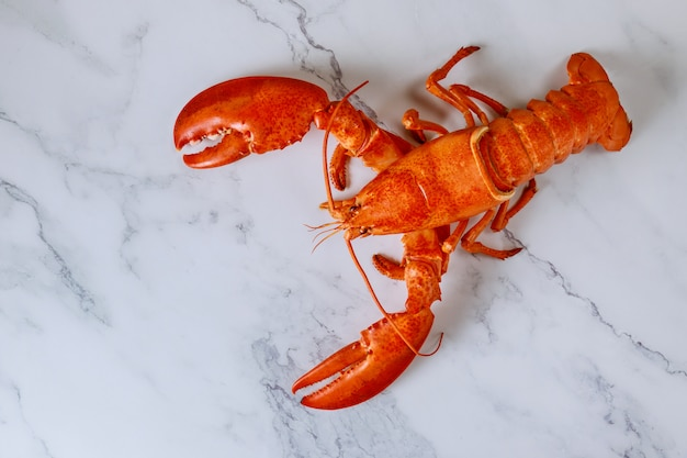 Top view of delicious freshly steamed lobster on white slate plate