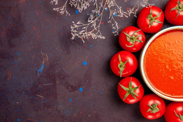 Vista dall'alto deliziosa zuppa di pomodoro circondata da pomodori rossi freschi sullo sfondo scuro salsa di zuppa di pomodoro