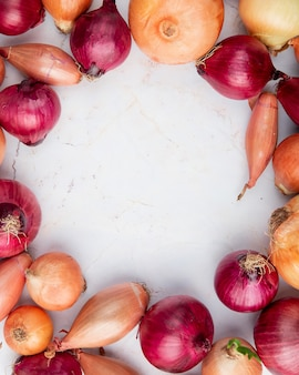 Top view of different onions set in circular shape on white background with copy space