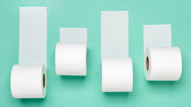 Top view of different toilet paper rolls